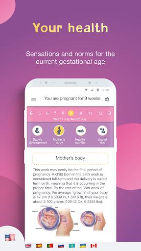 Calendario di gravidanza e tracker